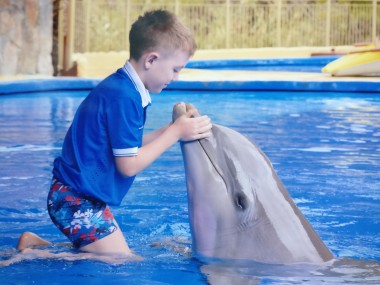 Priit ja delfiin