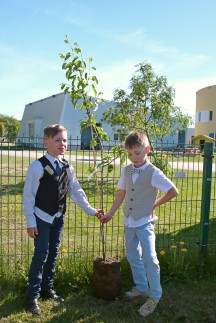Kaks kanget pirnipuuga