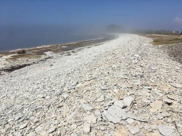 Kiviklibune rannajoon